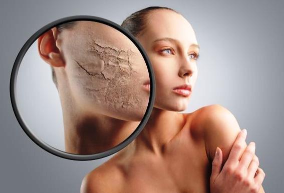 Эффективный крем для сухой кожи лица