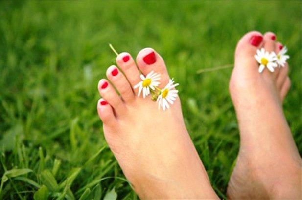 Ромашка лекарственная полезна в креме от запаха ног