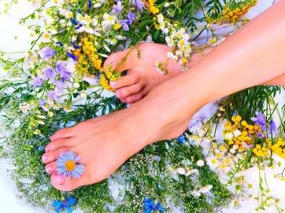 Крем против запаха ног может содержать экстракты лекарственных трав