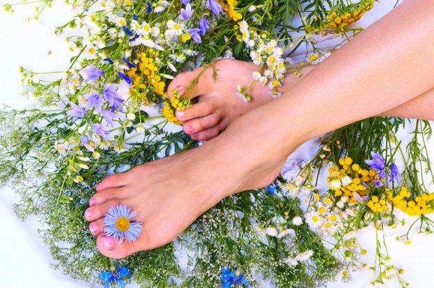 Лечебные травы помогают освежить кожу ног и обладают охлаждающим эффектом