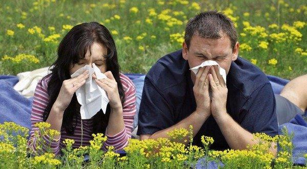 Состав крема от аллергии для беременных