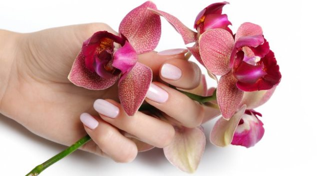 крем для отбеливания кожи обладает ухаживающими свойствами