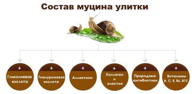 Состав экстракта улитки в креме snail me